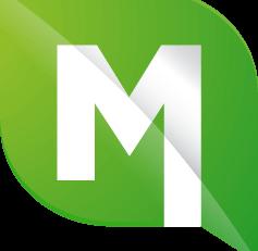 Mintt Logo